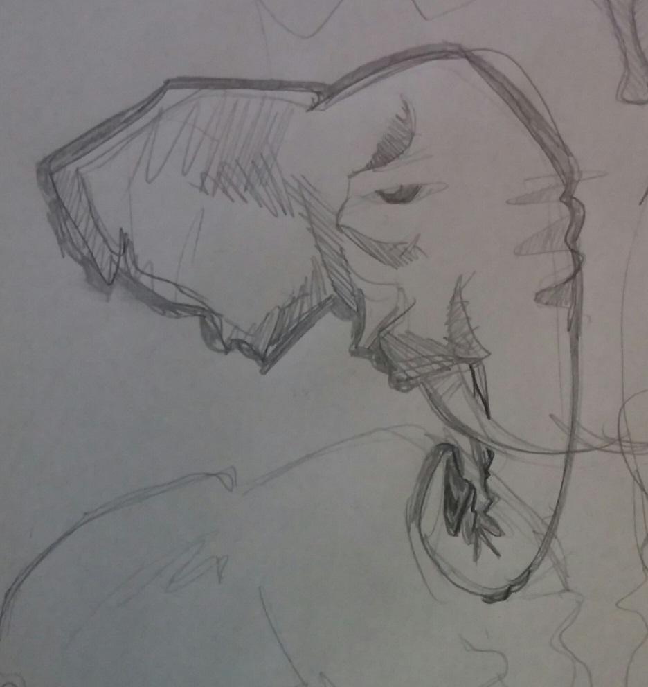 elefantes0
